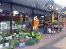 De Oranjerie bloemen 't Lelycentre